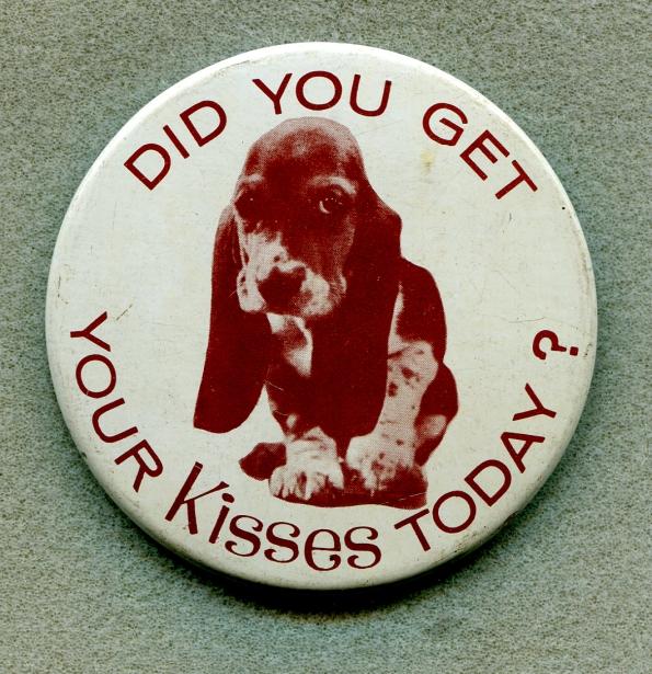 Basset hound button