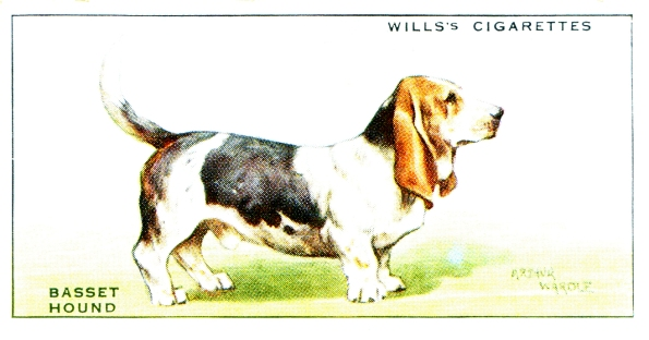 Basset cigarette card