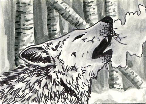 ATC Winter Wolf
