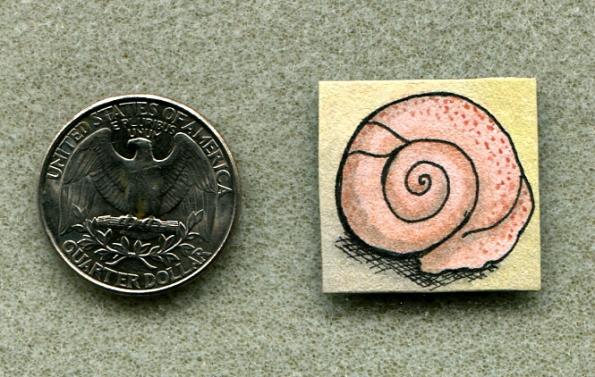 Seashell inchie Shellie Lewis