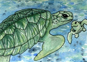 ATC Turtle Friends, pen and ink with watercolour on Arches 140# hot press. This was a custom for a child who wanted a sea turtle theme very much!