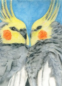 ATC Cockatiels, watercolour and wate3rcolour pencils on 140# hot press, mounted on board