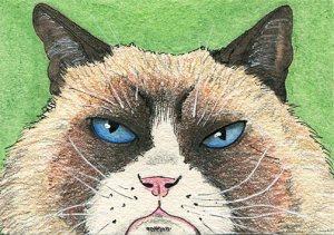 ATC-Grumpy-Cat