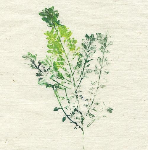 leaf-print-02-web